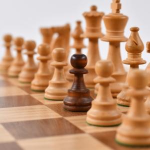 Šachisté jedou online a připravují se na turnaje